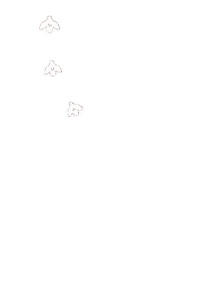 CSDNB Logo